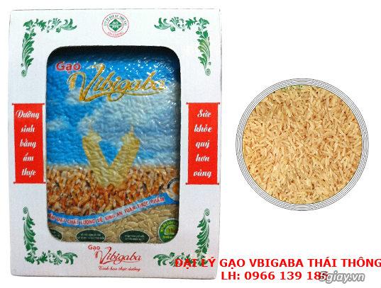 Gạo Vibigaba - Tinh hoa thực dưỡng! - 7