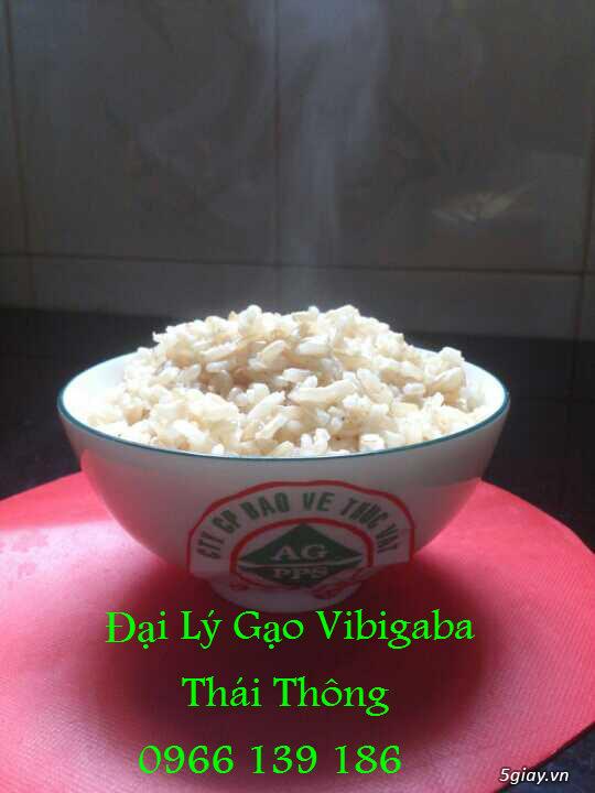 Gạo Vibigaba - Tinh hoa thực dưỡng! - 11