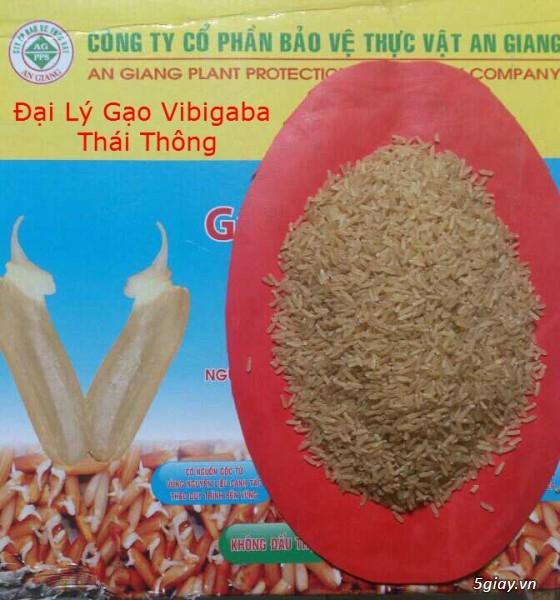 Gạo Vibigaba - Tinh hoa thực dưỡng! - 10