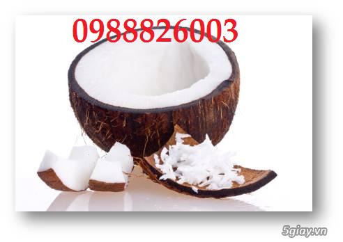 Công dụng tuyệt vời của dầu dừa - Bạn có biết??? | Congnghe.