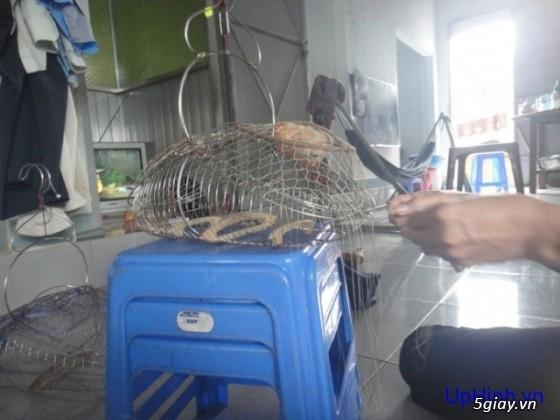 Cơ sở làm lụp bẫy chim - 5