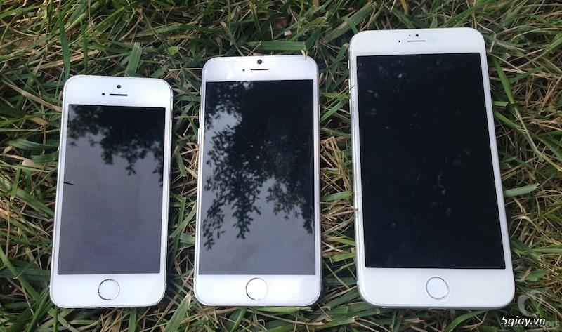 Tin tức - Apple nỗ lực sản xuất hơn 80 triệu iPhone 6 để đáp ứng thị