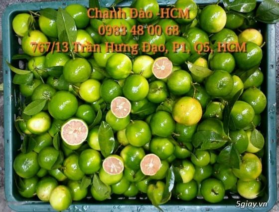Cung Cấp Chanh Đào Tươi tại Hồ Chí Minh