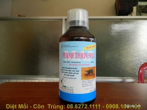Diệt Mối, Phòng Mối, Diệt Côn Trùng ( ruồi, muỗi, kiến, gián.........) - 10