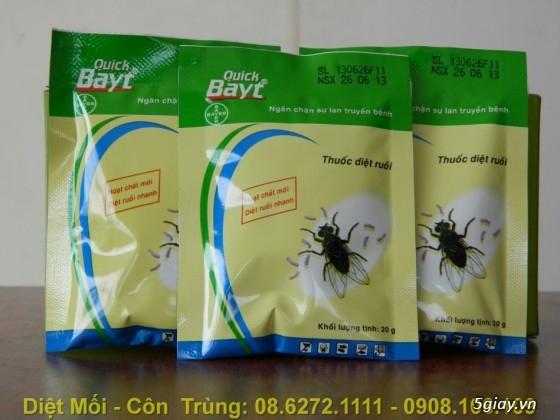 Diệt Mối, Phòng Mối, Diệt Côn Trùng ( ruồi, muỗi, kiến, gián.........) - 17