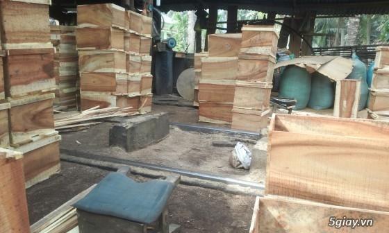 Bán ong mật giống và dụng cụ nuôi ong - 9