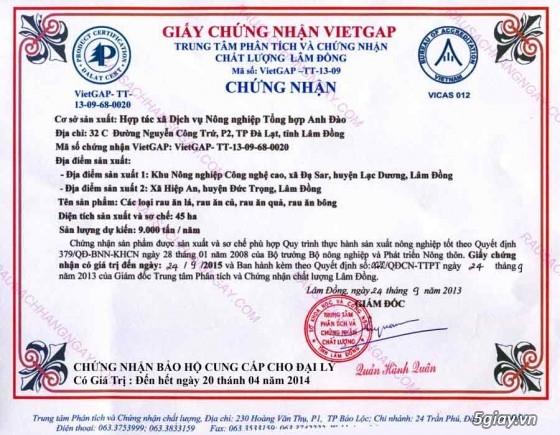 Hợp tác xã Anh Đào - Chuyên cung cấp rau củ quả an toàn Đà Lạt