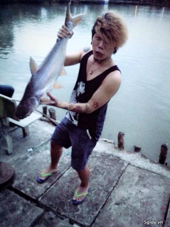 Mồi câu cá tra, bao lên cá 100% - 20
