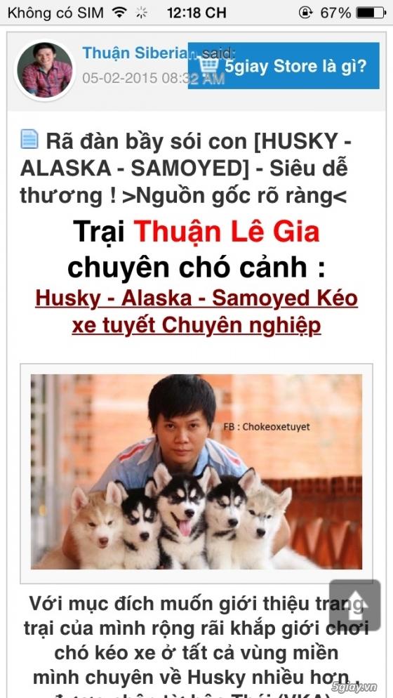 Cảnh báo mua chó Thuận Lê Gia lừa đảo - 1