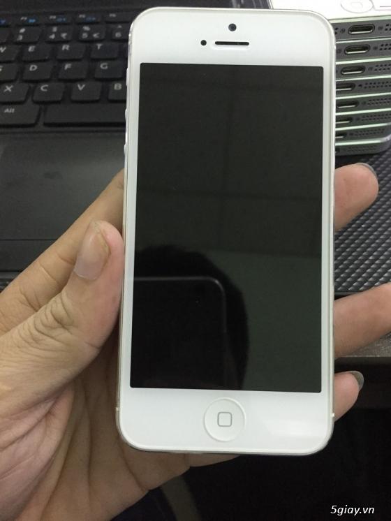 Iphone 5 sỉ và lẻ chỉ 5tr