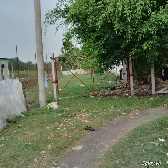 HCM- Củ Chi Bán đất vườn 232 mét vuông giá 250 trieu