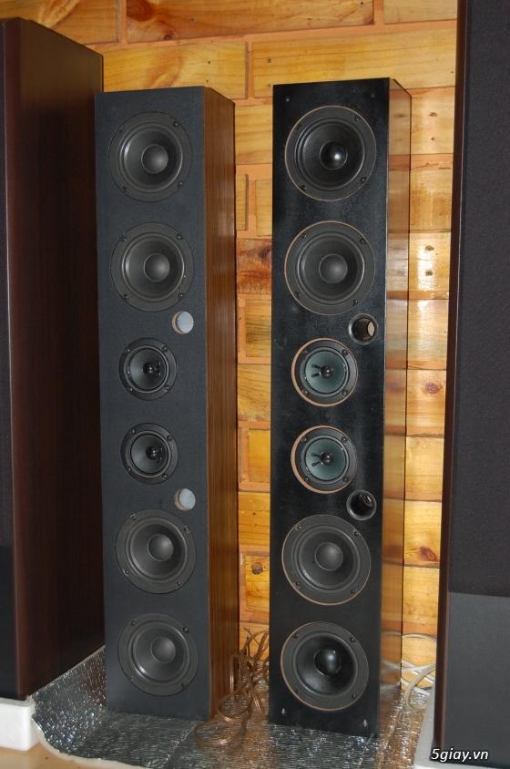 Loa karaoke trung tâm DMG - bước đột phá trong công nghệ âm thanh karaoke. - 6