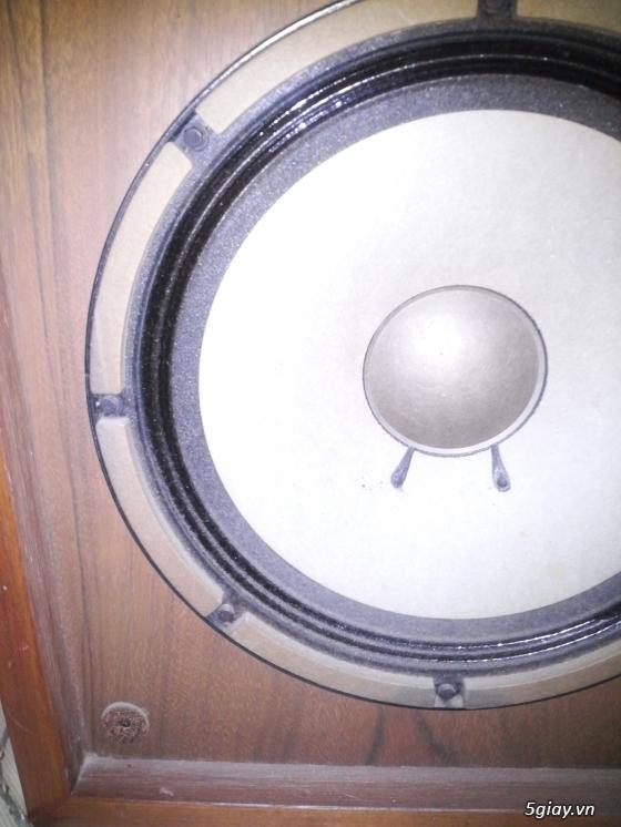 Loa Diatone DS 34B MKII hàng cam về