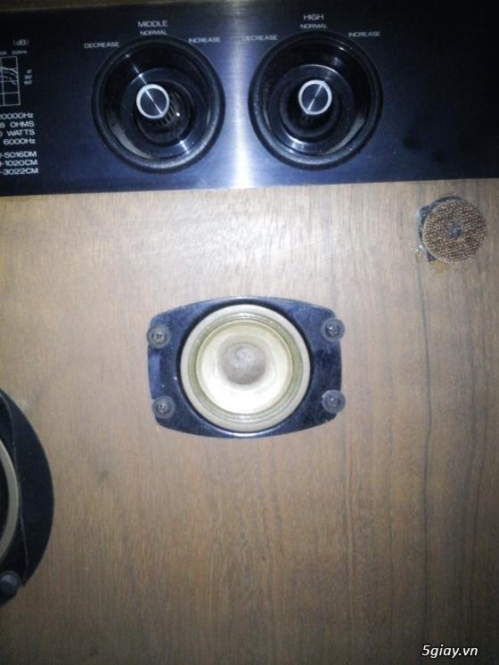 Loa Diatone DS 34B MKII hàng cam về - 6