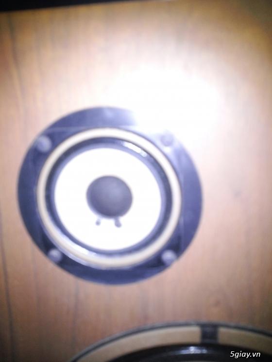 Loa Diatone DS 34B MKII hàng cam về - 4