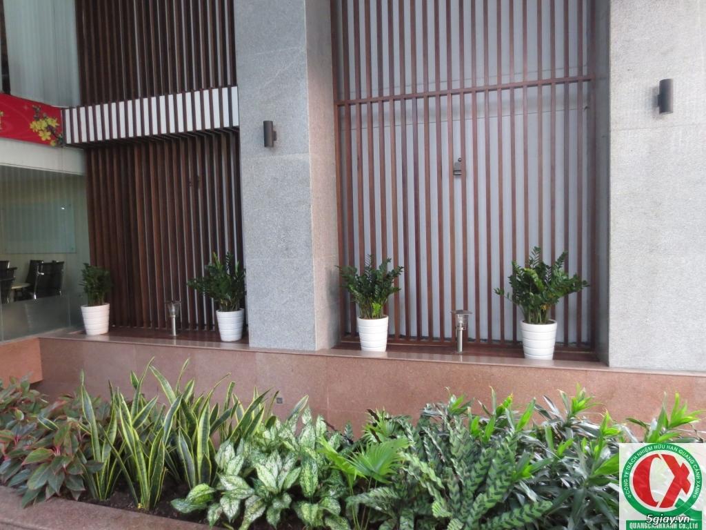 Dịch vụ làm vườn, thi công thiết kế duy trình cảnh quan sân vườn 5