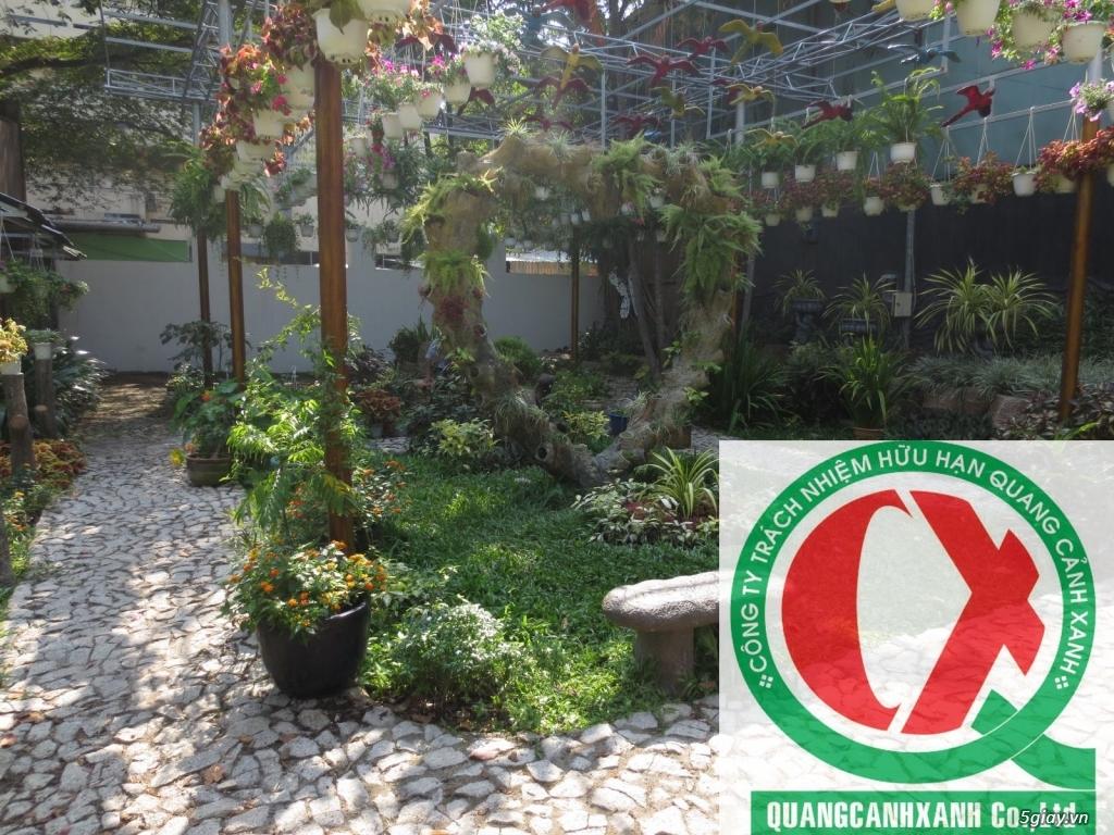 Dịch vụ làm vườn, thi công thiết kế duy trình cảnh quan sân vườn 11