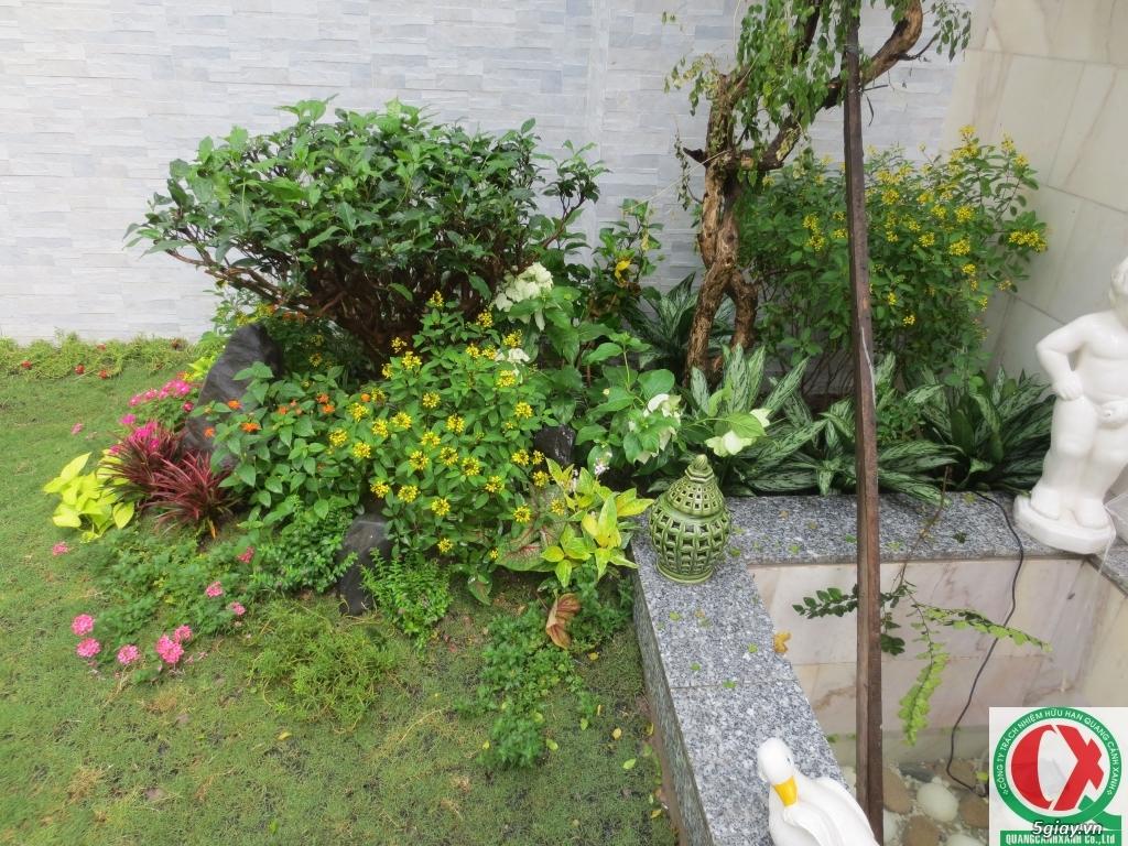 Dịch vụ làm vườn, thi công thiết kế duy trình cảnh quan sân vườn 2