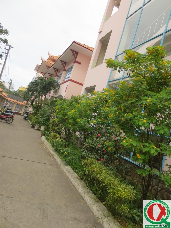Dịch vụ làm vườn, thi công thiết kế duy trình cảnh quan sân vườn 1