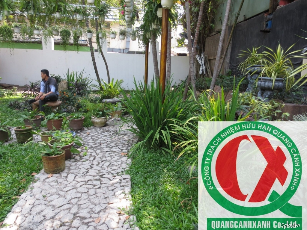 Dịch vụ làm vườn, thi công thiết kế duy trình cảnh quan sân vườn 7