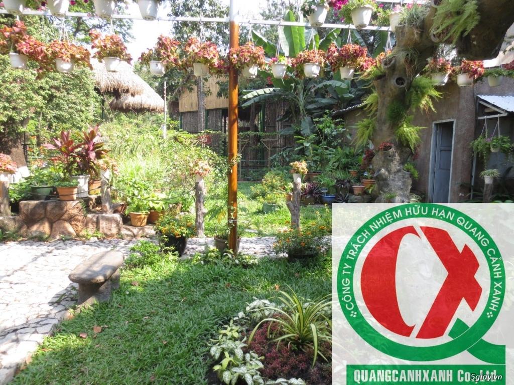 Dịch vụ làm vườn, thi công thiết kế duy trình cảnh quan sân vườn 8