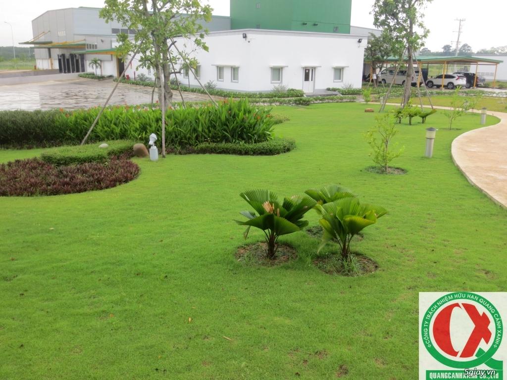 Dịch vụ làm vườn, thi công thiết kế duy trình cảnh quan sân vườn 13