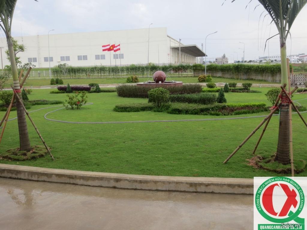 Dịch vụ làm vườn, thi công thiết kế duy trình cảnh quan sân vườn 12