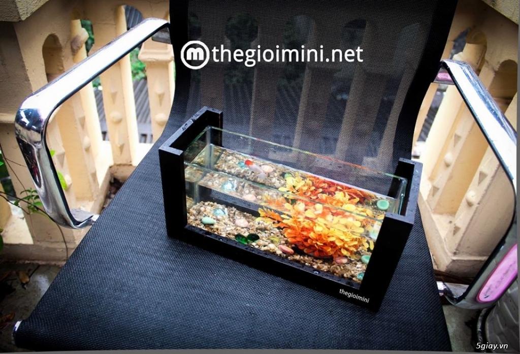 Bể cá mini - bể thủy sinh mini tuyệt đẹp cho bàn làm việc và thư giãn - 16