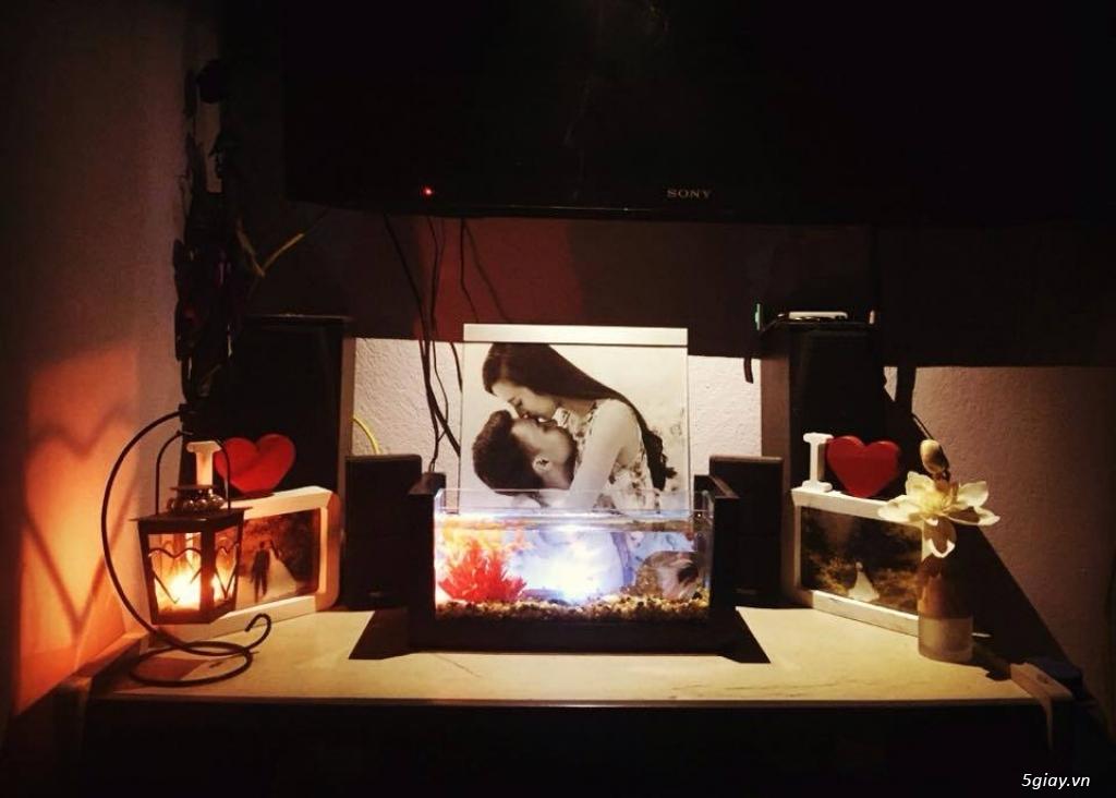 Bể cá mini - bể thủy sinh mini tuyệt đẹp cho bàn làm việc và thư giãn - 10
