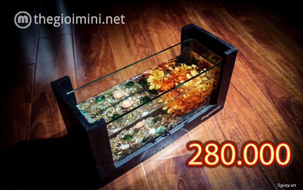 Bể cá mini - bể thủy sinh mini tuyệt đẹp cho bàn làm việc và thư giãn - 1