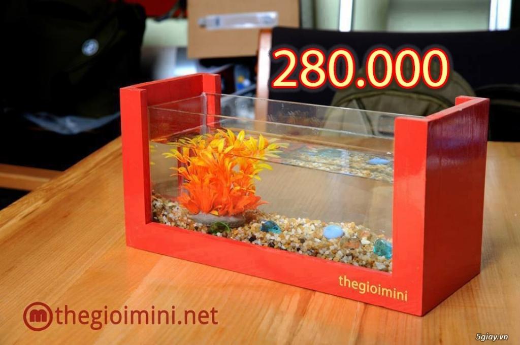 Bể cá mini - bể thủy sinh mini tuyệt đẹp cho bàn làm việc và thư giãn - 2