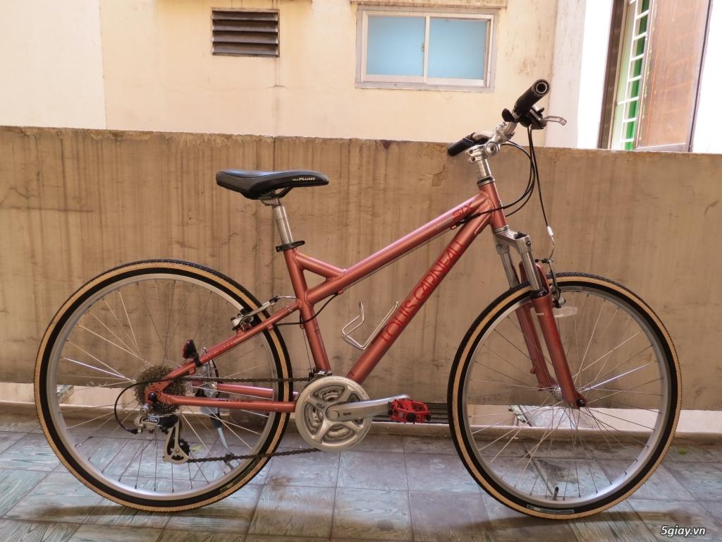 Xe đạp hàng bãi Nhật - 1