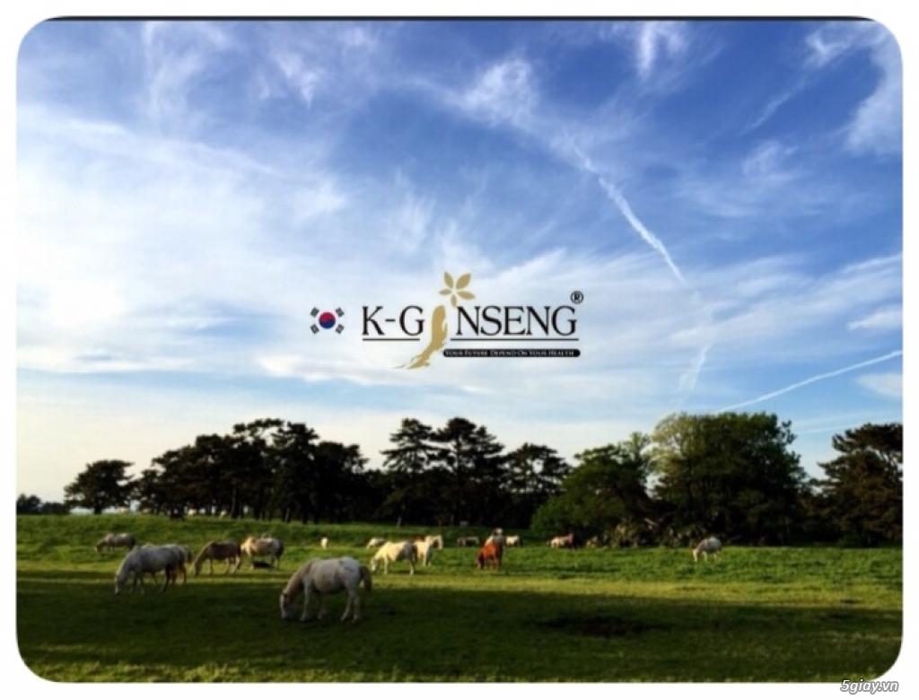 Cao Xương Ngựa Hàn Quốc - Giúp Chắc Xương Bổ Khớp - 1