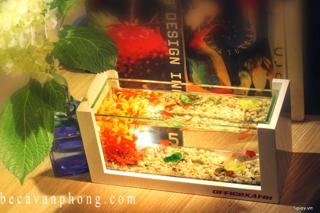 Bể Cá cảnh Siêu rẻ Siêu đẹp Siêu Sang Siêu phong thủy - 3