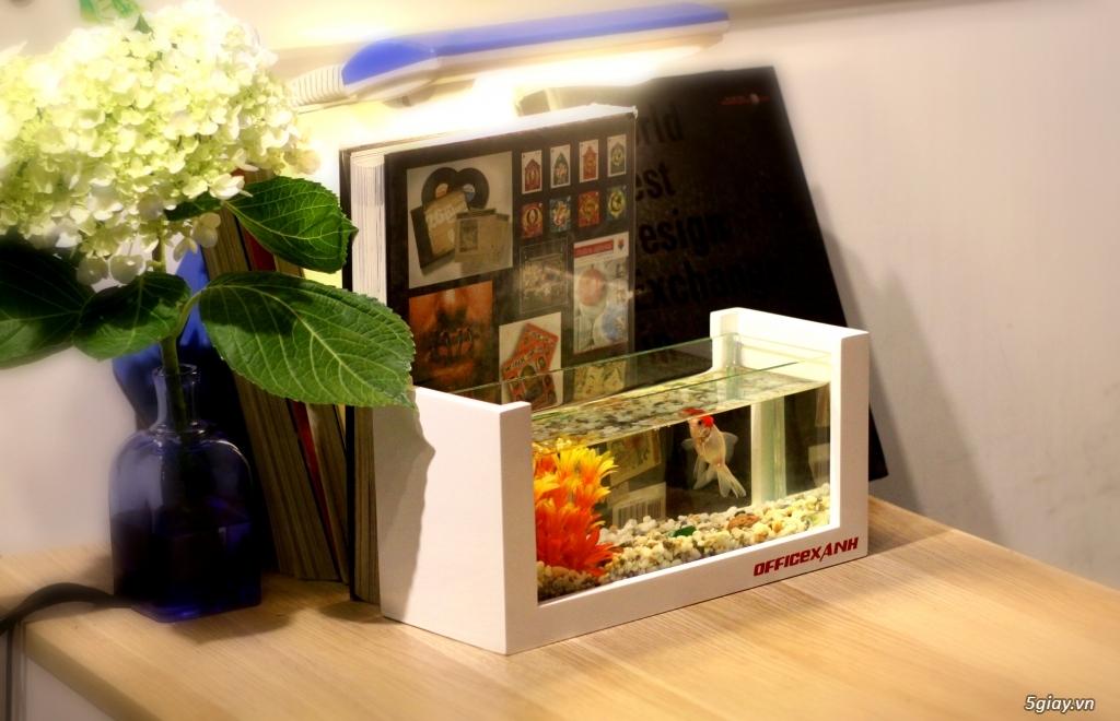 Sản xuất Sofa, đồ gỗ, nội thất giá rẻ tại GiaRevietnam.com - 6