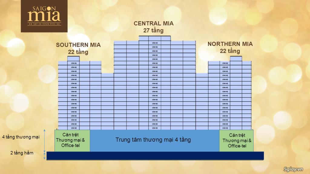 CHCC 5 sao vị trí đẹp NT hoàn thiện góp k lãi suất đầu tư sinh lời cao - 9