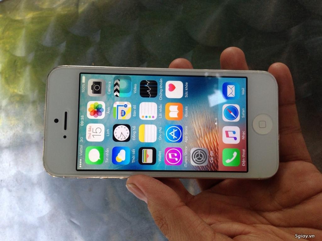 Iphone 5/5s 16/32gb trắng,đen, vàng quốc tế - 4