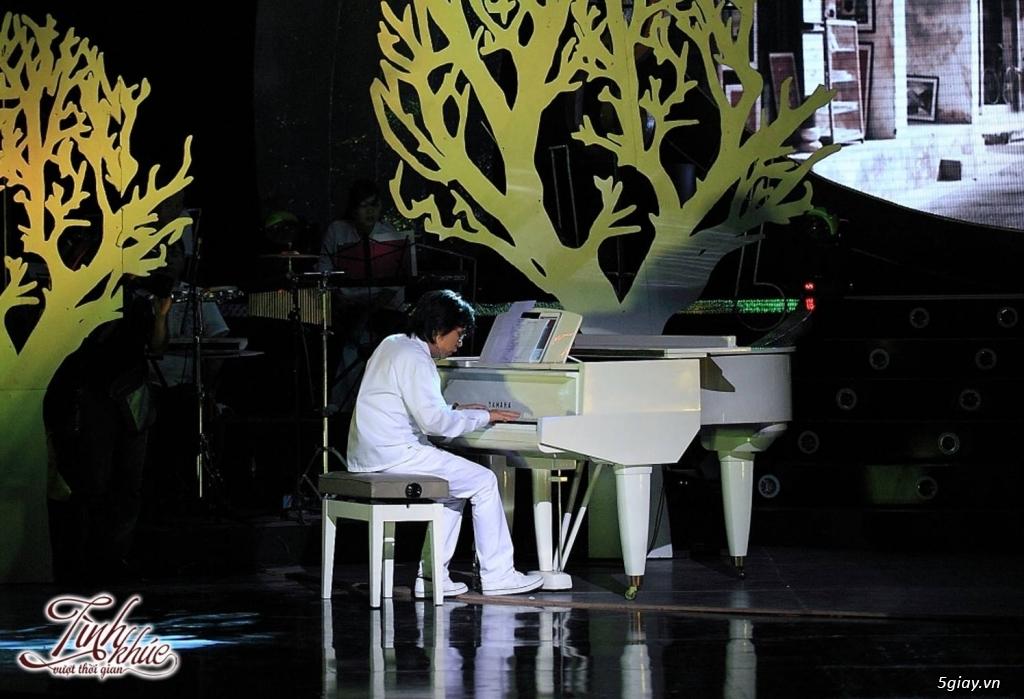 Chuyên Cho Thuê Đàn Piano Cơ Biểu Diễn Chuyên Nghiệp TpHCM - 23
