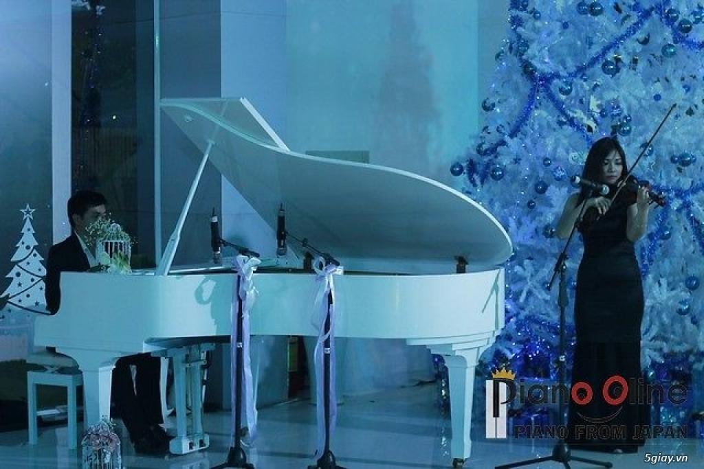 Chuyên Cho Thuê Đàn Piano Cơ Biểu Diễn Chuyên Nghiệp TpHCM - 13