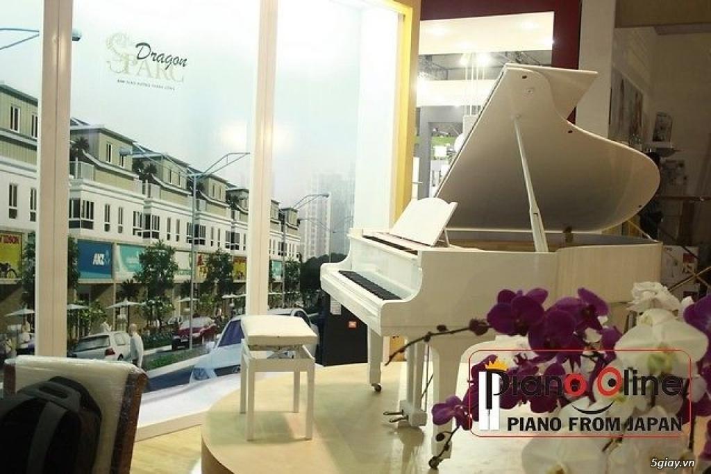 Chuyên Cho Thuê Đàn Piano Cơ Biểu Diễn Chuyên Nghiệp TpHCM - 19