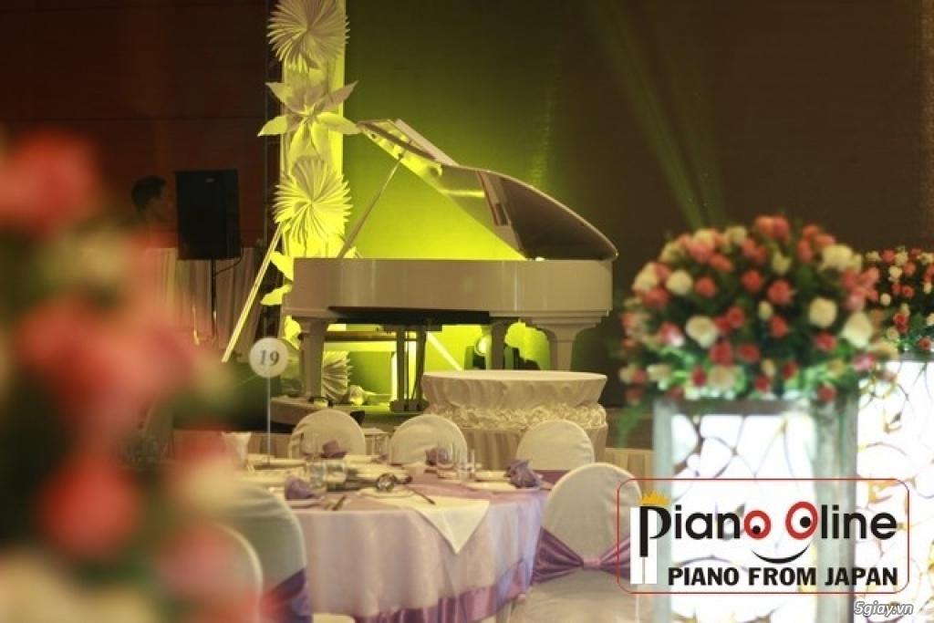 Chuyên Cho Thuê Đàn Piano Cơ Biểu Diễn Chuyên Nghiệp TpHCM - 15