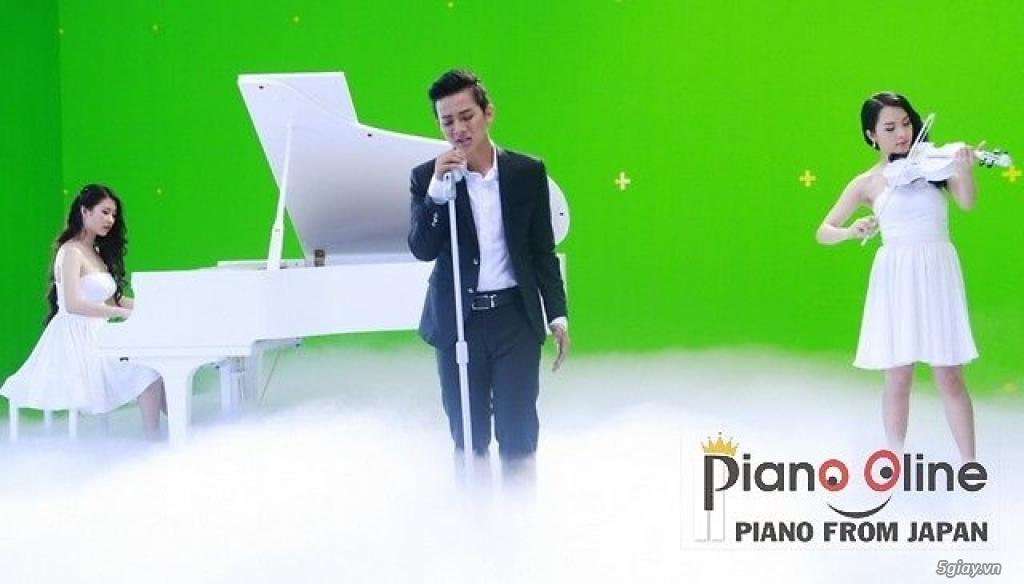 Chuyên Cho Thuê Đàn Piano Cơ Biểu Diễn Chuyên Nghiệp TpHCM - 3