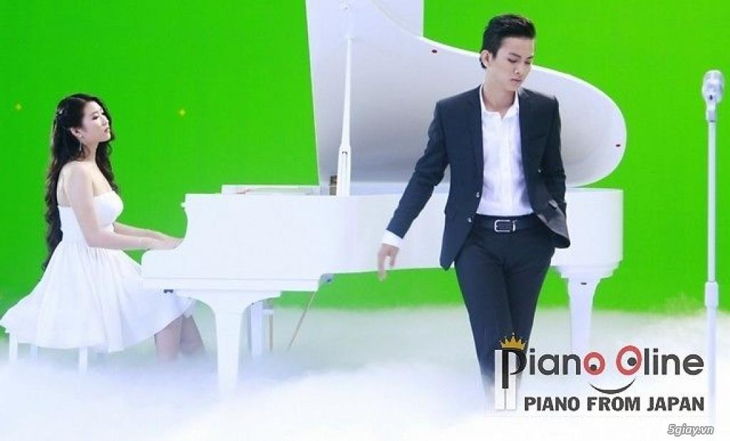 Chuyên Cho Thuê Đàn Piano Cơ Biểu Diễn Chuyên Nghiệp TpHCM - 8