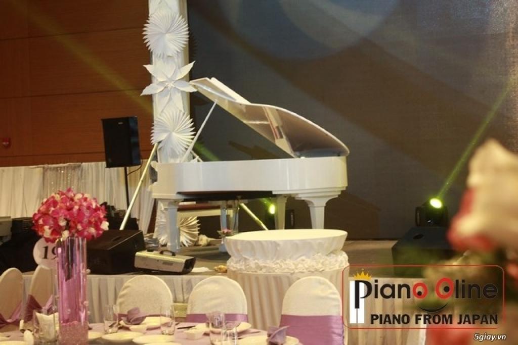 Chuyên Cho Thuê Đàn Piano Cơ Biểu Diễn Chuyên Nghiệp TpHCM - 16
