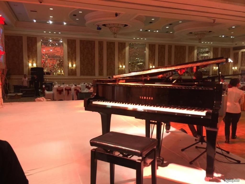Chuyên Cho Thuê Đàn Piano Cơ Biểu Diễn Chuyên Nghiệp TpHCM - 5