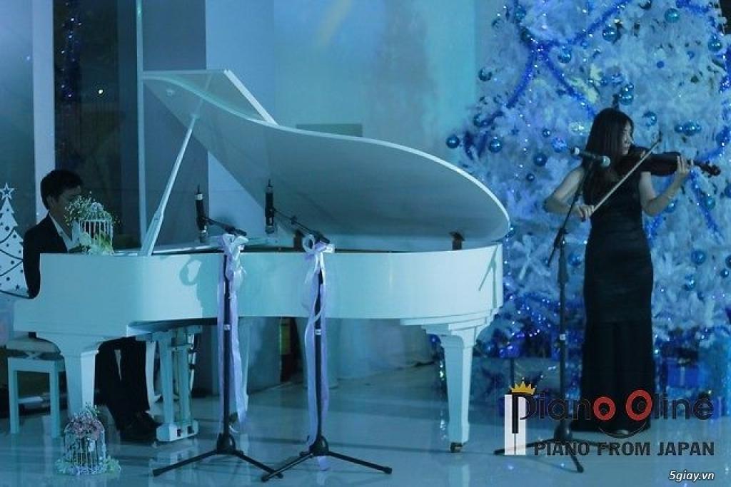 Chuyên Cho Thuê Đàn Piano Cơ Biểu Diễn Chuyên Nghiệp TpHCM - 12