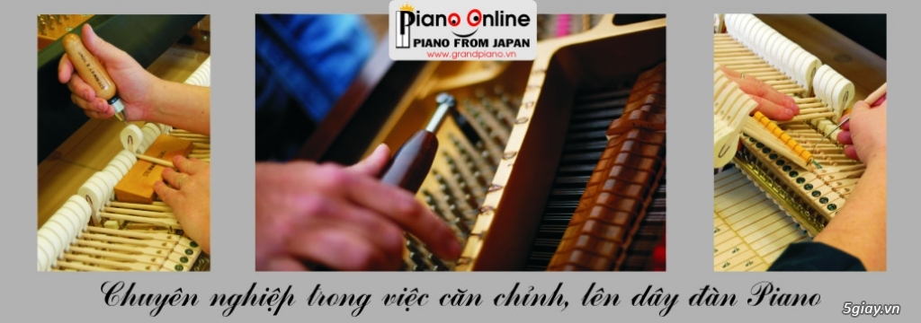 Chỉnh Dây Đàn Piano Cơ Chuyên Nghiệp Tp.HCM - 11