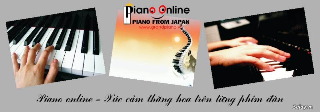 Chỉnh Dây Đàn Piano Cơ Chuyên Nghiệp Tp.HCM - 13