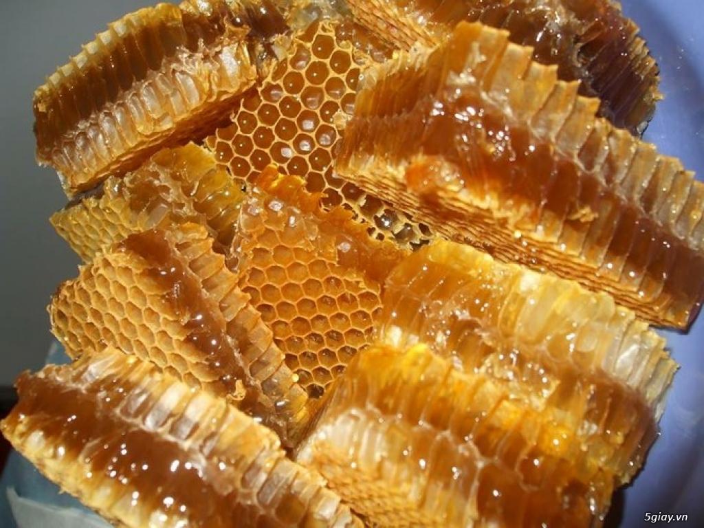 Mật ong nguyên chất nuôi thủ công tại rẫy gia đình. - 2