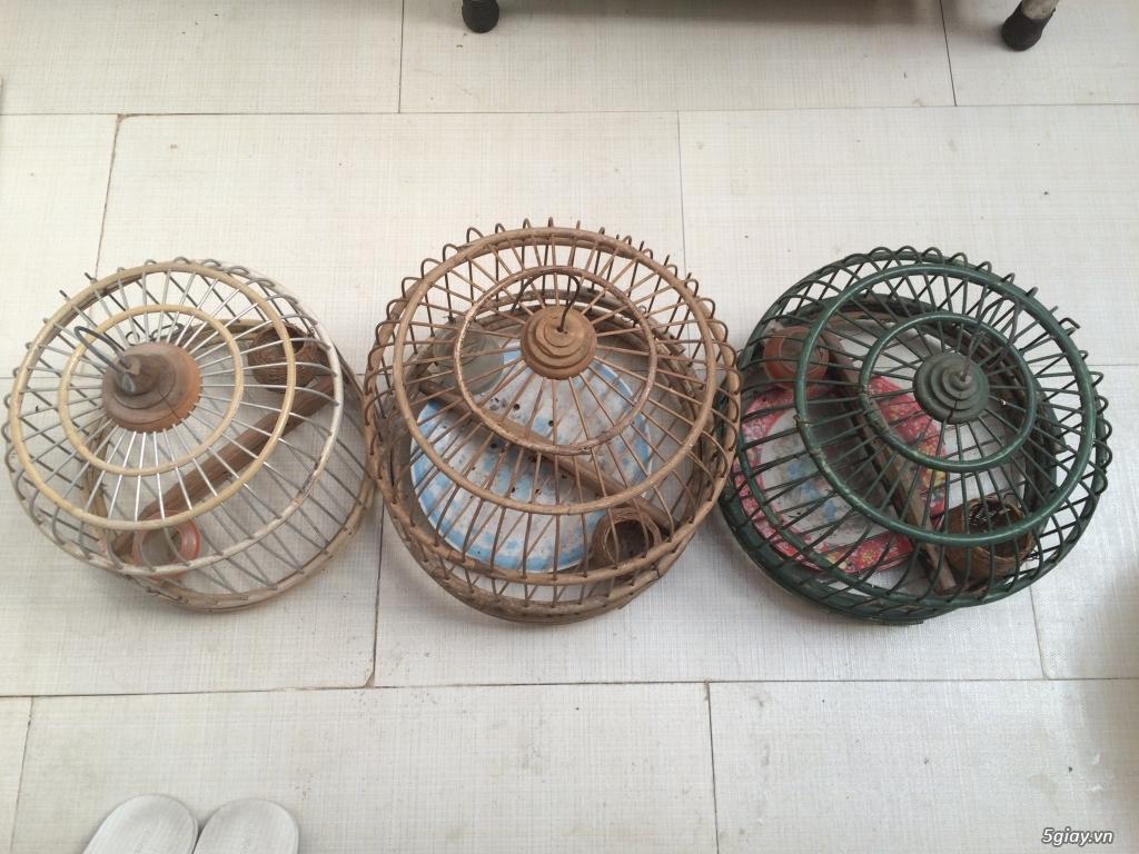 Cần thanh lý 3 lồng chim cu gắy
